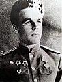 Гвардии капитан Н.Ф. Шестопалов.jpg