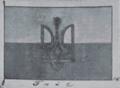 Гюйс Украинской Державы (утвержденный 22.03.1918).png