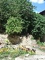 Дворец-лятна резиденция - градина.JPG