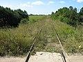 Заброшенная железная дорога - panoramio.jpg