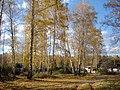 Золотая осень на Южном Урале (2) - panoramio.jpg