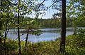 Озеро Тихое - panoramio.jpg