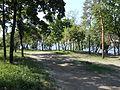 Парк Шевченка 30.JPG