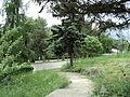 Парк шума Гази Баба во мај (132).JPG