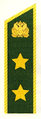 Петлица ВНС Рослесхоз-2.png