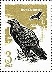 Почтовая марка СССР № 3285. 1965. Хищные птицы.jpg