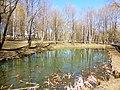 Правобережная старица реки Яузы с рогозником на участке долины реки Яузы между Широкой и Осташковской ул. 03.jpg