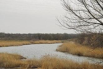 Molochna River - Image: Река Молочная