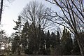 Сирецький дендрологічний парк 35.jpg