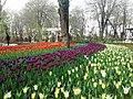 Скверы Душанбе 4.jpg