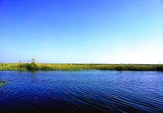 Lake Mariout - Image: بحيرة مريوط (Mariout lake)