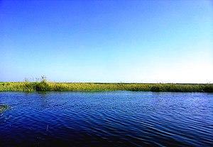 بحيرة_مريوط_(Mariout_lake)