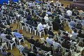 همایش هیئت های فعال در عرصه خدمت رسانی در قصر شیرین که به همت جامعه ایمانی مشعر برگزار گشت Iran-Qasr-e Shirin 34.jpg
