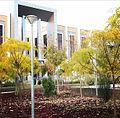 پاییز در دانشگاه باقرالعلوم.jpg