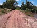 ทิวทัศน์ หนองกอมเกาะ - panoramio (19).jpg