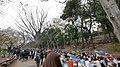 井の頭公園 - panoramio (38).jpg