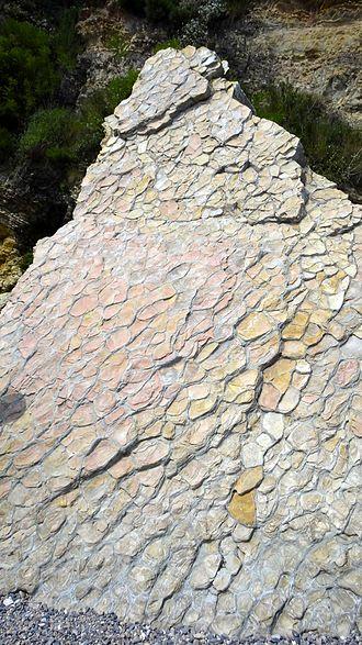 Nodule (geology) - Concretionary nodular limestone at Jinshitan Coastal National Geopark, Dalian, China