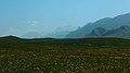 热尔大坝草原Rerdaba grassland - panoramio (2).jpg