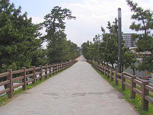 Sōka - Sōka Matsubara