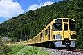西武鉄道新2000系 秩父線.jpg