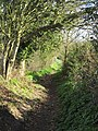 -2019-03-05 Footpath between East and West Runton, Norfolk (4).JPG
