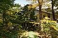 131103 Hokkaido University Botanical Gardens Sapporo Hokkaido Japan03s3.jpg