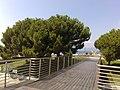 16043 Chiavari, Metropolitan City of Genoa, Italy - panoramio (37).jpg