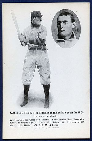 Jim Murray (outfielder) - Image: 1908 Offerman Jim Murray