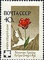 1960 CPA 2497.jpg