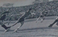 1966 Rosario Central 0-Boca Juniors 0 -1.png