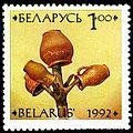 1992. Stamp of Belarus 0018.jpg
