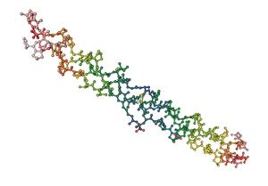 1bkv_collagen triple helix