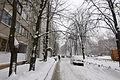 2012-12-25 Volhohradska Street, Kiev - 08.jpg