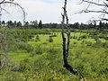 2012 Photo Contest - Landscape Category (7985482447).jpg