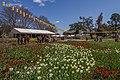 2015-09-18 Floriade Canberra 2015 - 8.jpg