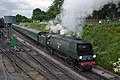 34007 Departing Ropley - Mid Hants Railway (9112703473).jpg