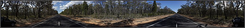 File:360 Panorama of the Oxley Highway between Coonabarabran and Mullaley, showing what would be best described as Pilliga Scrub - Forest. Peter Neaum. - panoramio.jpg