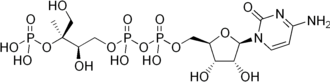Non-mevalonate pathway - Image: 4 diphosphocytidyl 2 C methyl D erythritol 2 phosphate