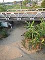 5813jfSulipan Bridge Apalit Pampangafvf 31.JPG