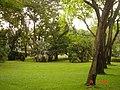AIT - panoramio - Seksan Phonsuwan (72).jpg