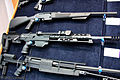 ARMS & Hunting 2010 exhibition (331-18).jpg