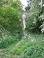 A narrow path - geograph.org.uk - 1293267.jpg