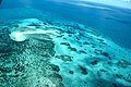 Aerial View of Great Barrier Reef (Ank Kumar) 07.jpg
