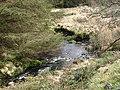 Afon Diliw - geograph.org.uk - 772532.jpg