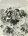 Africa (1878) (14796254783).jpg