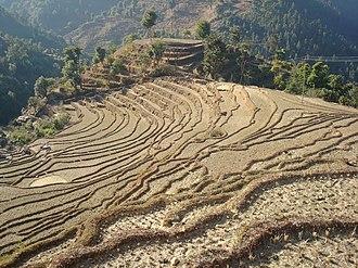 Geography of Nepal - Terraced farmland in Nepal.