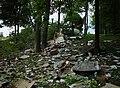 Air Tahoma N586P crash site.jpg