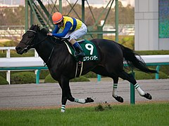 Air Windsor(JPN) IMG 2374-2 20181201.jpg