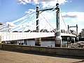 Albert Bridge - geograph.org.uk - 1570946.jpg