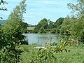 Alderwood Ponds - geograph.org.uk - 20128.jpg